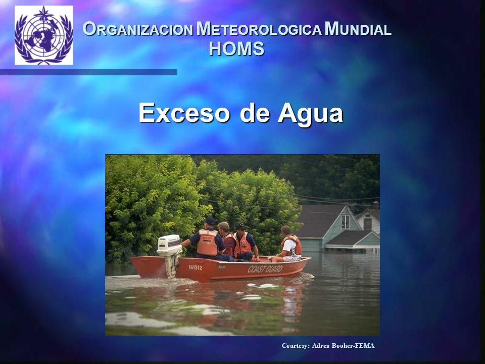 Normas Guía de Prácticas Hidrologicas de la OMM International Organization for Standardization (ISO) Reglamento Técnico de la OMM