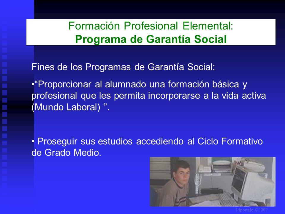 Formación Profesional Elemental: Programa de Garantía Social Fines de los Programas de Garantía Social: Proporcionar al alumnado una formación básica