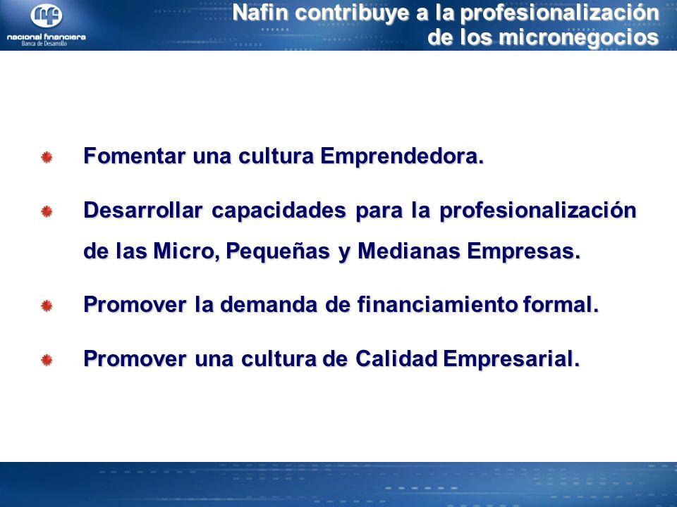 Nafin contribuye a la profesionalización de los micronegocios Fomentar una cultura Emprendedora.