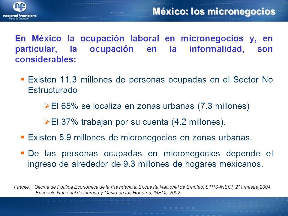 En México la ocupación laboral en micronegocios y, en particular, la ocupación en la informalidad, son considerables: Existen 11.3 millones de personas ocupadas en el Sector No Estructurado El 65% se localiza en zonas urbanas (7.3 millones) El 37% trabajan por su cuenta (4.2 millones).