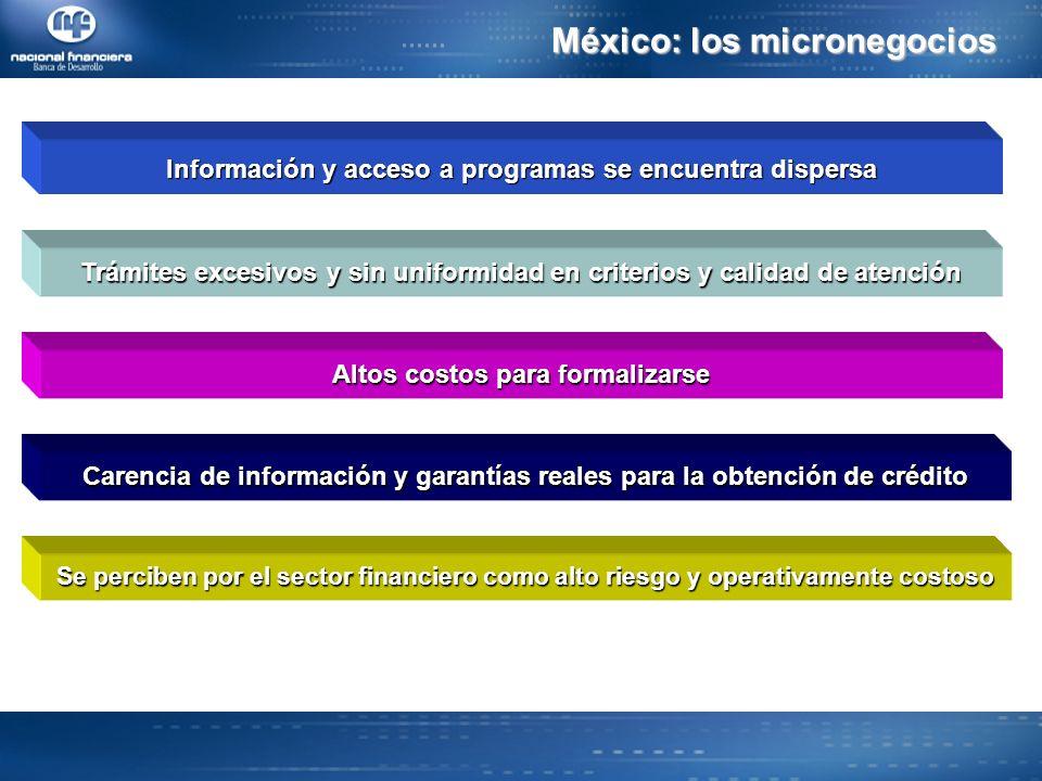 Información y acceso a programas se encuentra dispersa Trámites excesivos y sin uniformidad en criterios y calidad de atención Altos costos para formalizarse Carencia de información y garantías reales para la obtención de crédito Se perciben por el sector financiero como alto riesgo y operativamente costoso México: los micronegocios