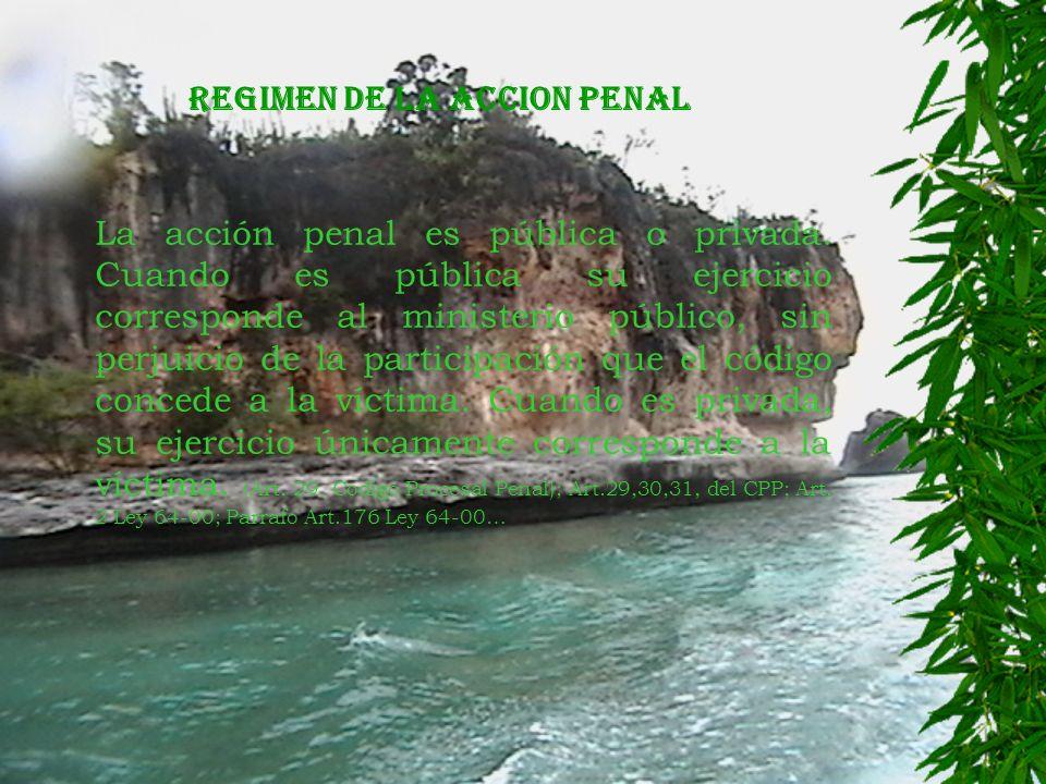 REGIMEN DE LA ACCION PENAL La acción penal es pública o privada.