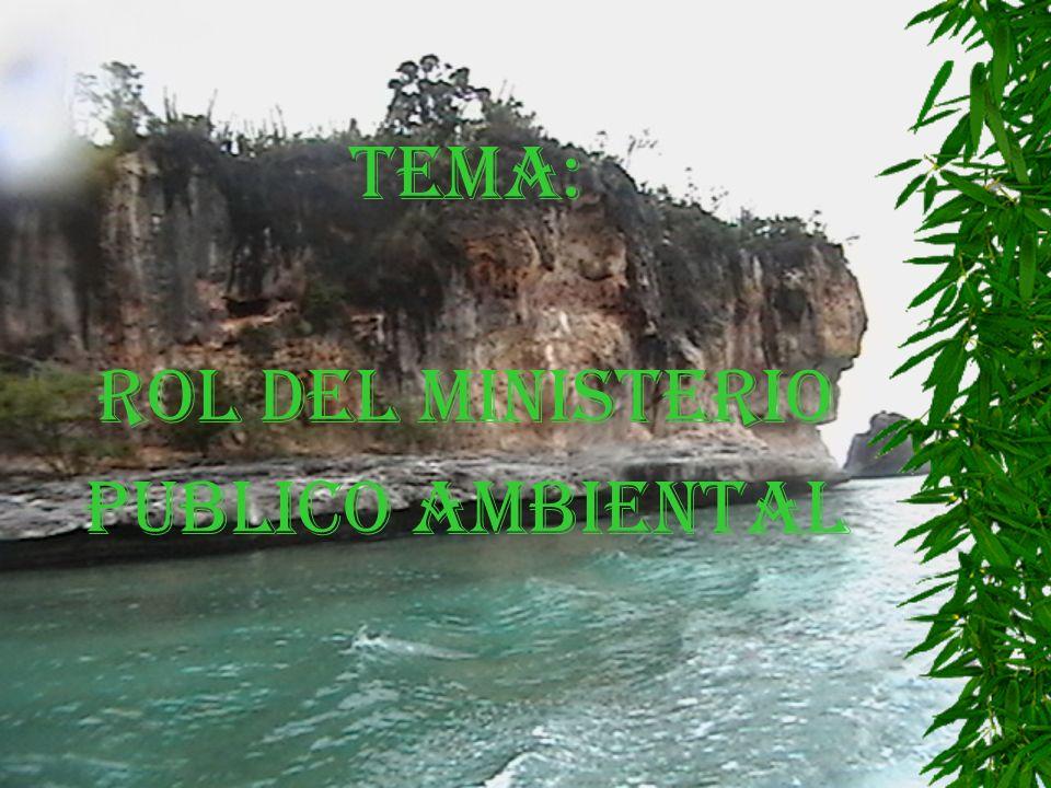 TEMA: ROL DEL MINISTERIO PUBLICO AMBIENTAL