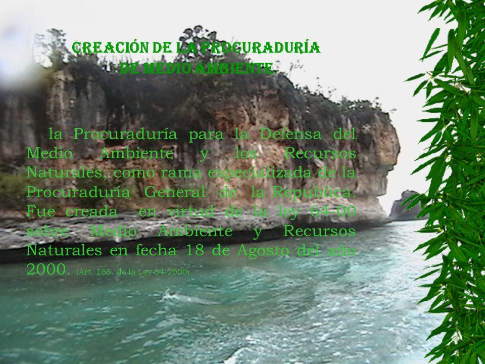 CREACIÓN DE LA PROCURADURÍA DE MEDIO AMBIENTE la Procuraduría para la Defensa del Medio Ambiente y los Recursos Naturales, como rama especializada de la Procuraduría General de la Republica.