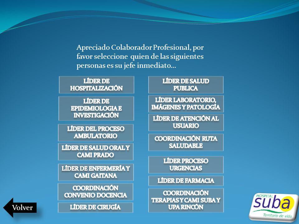 Apreciado Colaborador Profesional, por favor seleccione quien de las siguientes personas es su jefe inmediato…