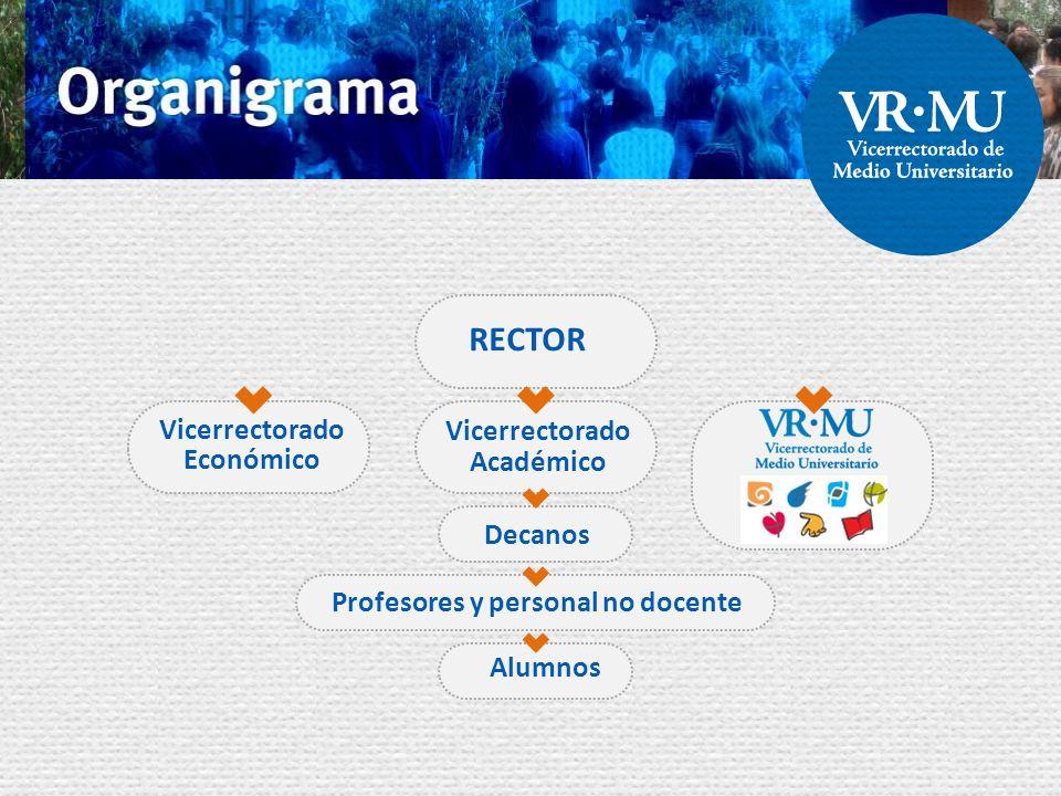 RECTOR Vicerrectorado Económico Vicerrectorado Académico Decanos Profesores y personal no docente Alumnos