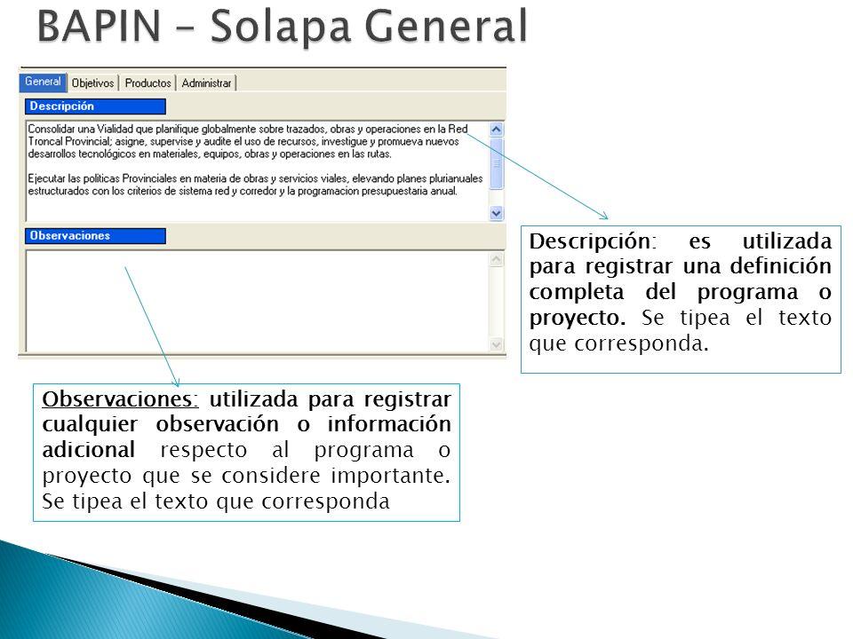 Descripción: es utilizada para registrar una definición completa del programa o proyecto.