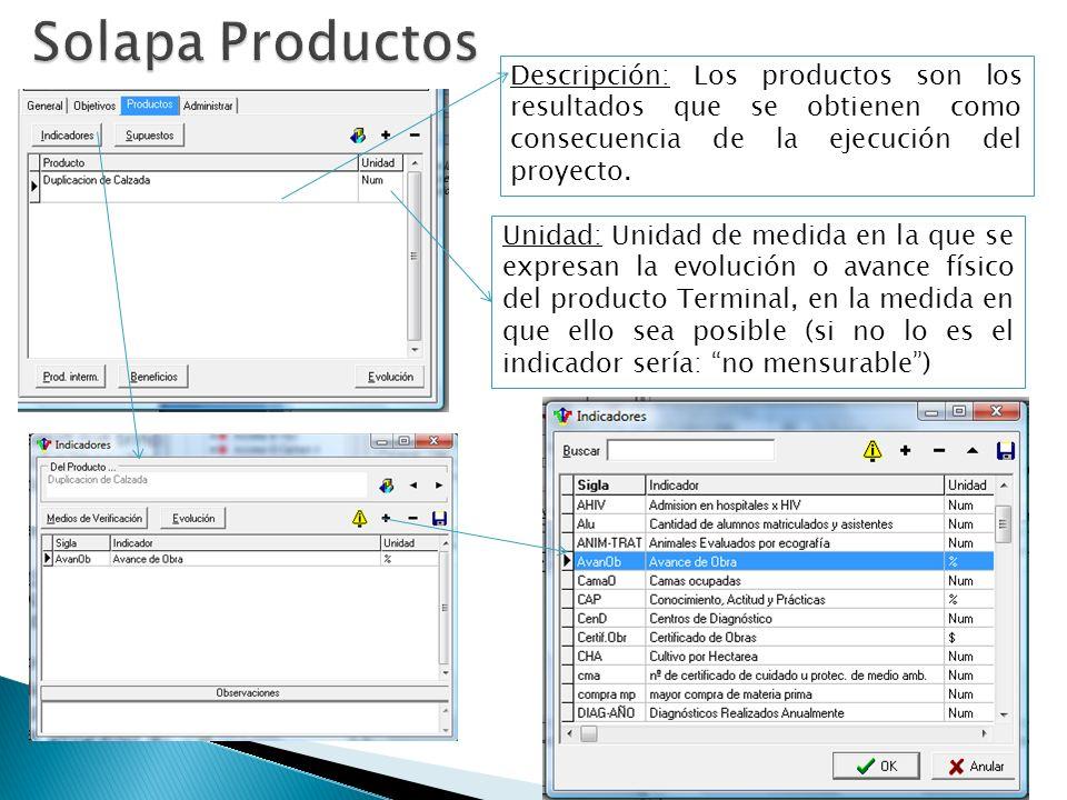 Descripción: Los productos son los resultados que se obtienen como consecuencia de la ejecución del proyecto.