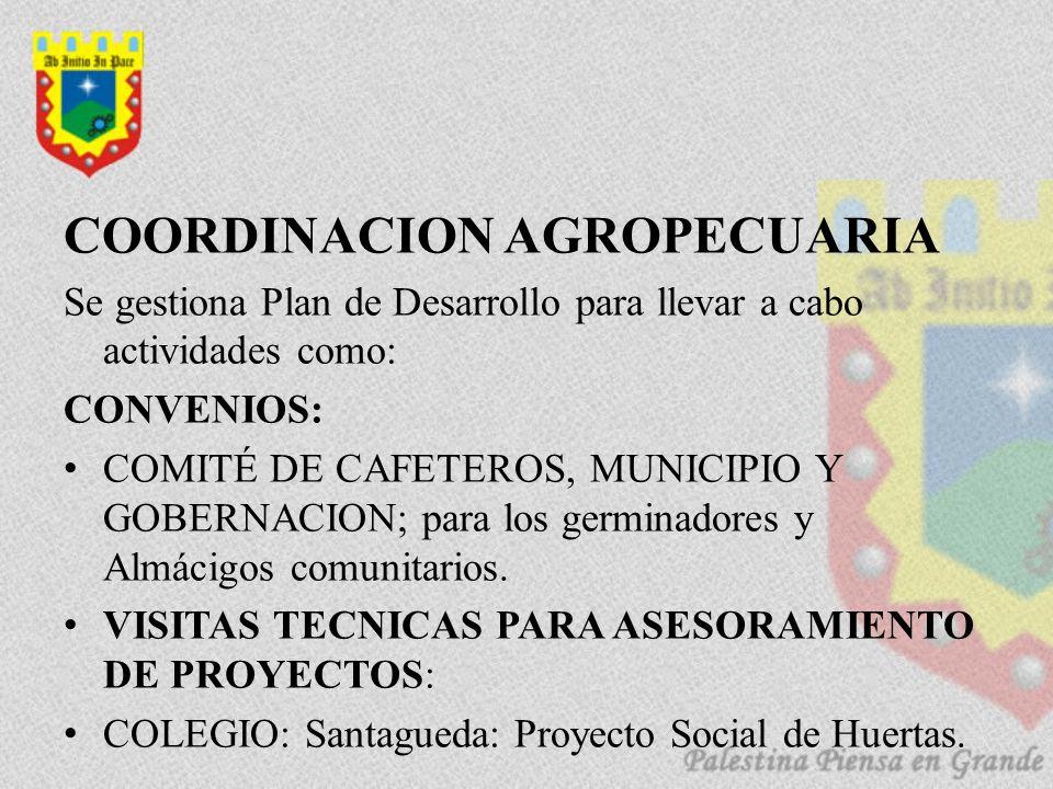 COORDINACION AGROPECUARIA Se gestiona Plan de Desarrollo para llevar a cabo actividades como: CONVENIOS: COMITÉ DE CAFETEROS, MUNICIPIO Y GOBERNACION; para los germinadores y Almácigos comunitarios.