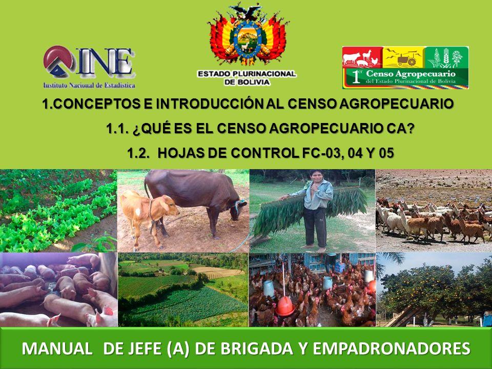 1.CONCEPTOS E INTRODUCCIÓN AL CENSO AGROPECUARIO CONCEPTOS E INTRODUCCIÓN AL CENSO AGROPECUARIOCONCEPTOS E INTRODUCCIÓN AL CENSO AGROPECUARIO 1.1.
