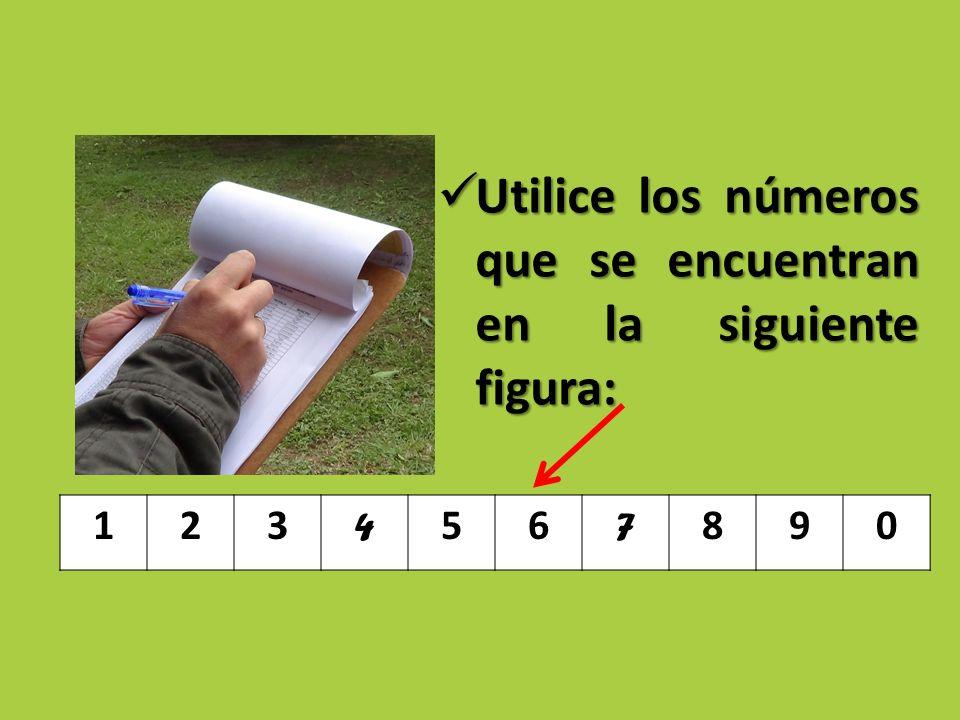 Utilice los números que se encuentran en la siguiente figura: Utilice los números que se encuentran en la siguiente figura: 123 4 56 7 890