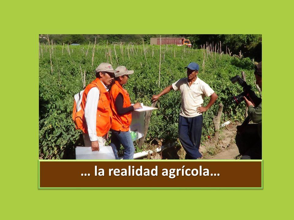 … la realidad agrícola…