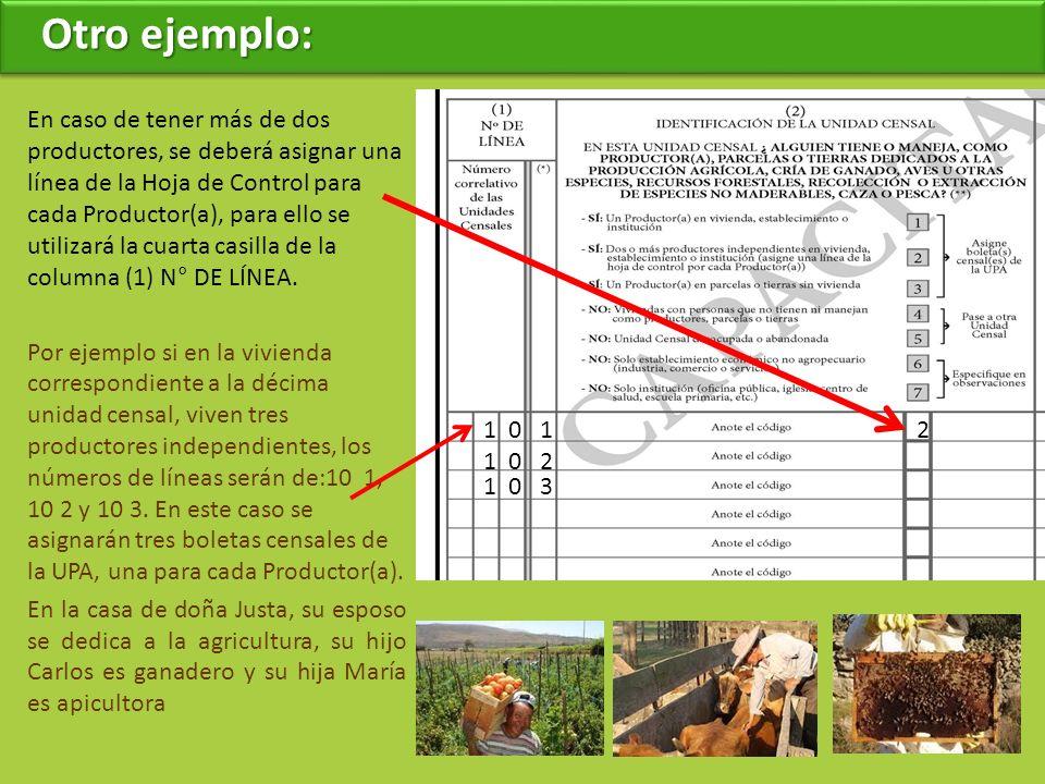 Otro ejemplo: En caso de tener más de dos productores, se deberá asignar una línea de la Hoja de Control para cada Productor(a), para ello se utilizará la cuarta casilla de la columna (1) N° DE LÍNEA.