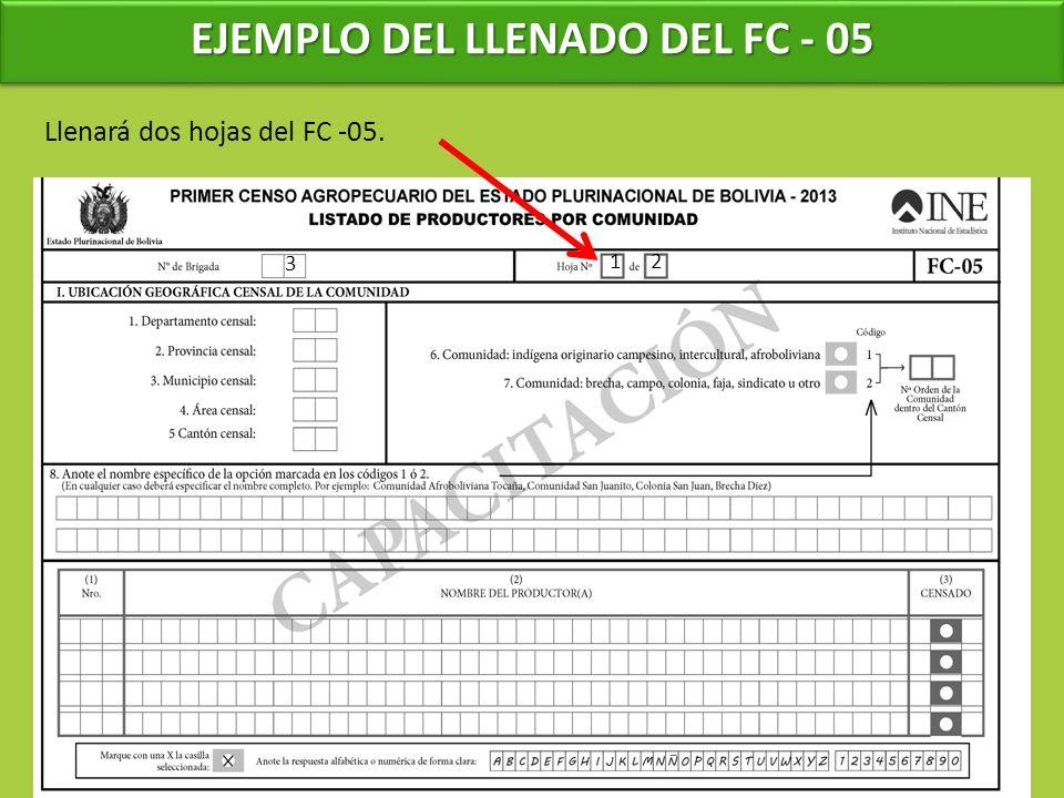 EJEMPLO DEL LLENADO DEL FC - 05 3 Llenará dos hojas del FC -05. 12