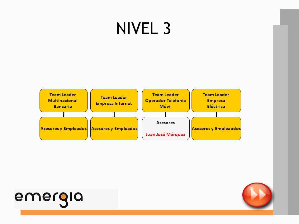 ELemENTOS ESTRUCTURALES FACTORES DE CONTINGENCIA CONFIGURACIÓN ORGANIZATIVA ANÁLISIS DESCRIPTIVO NIVEL 2 Este nivel está compuesto por los responsable