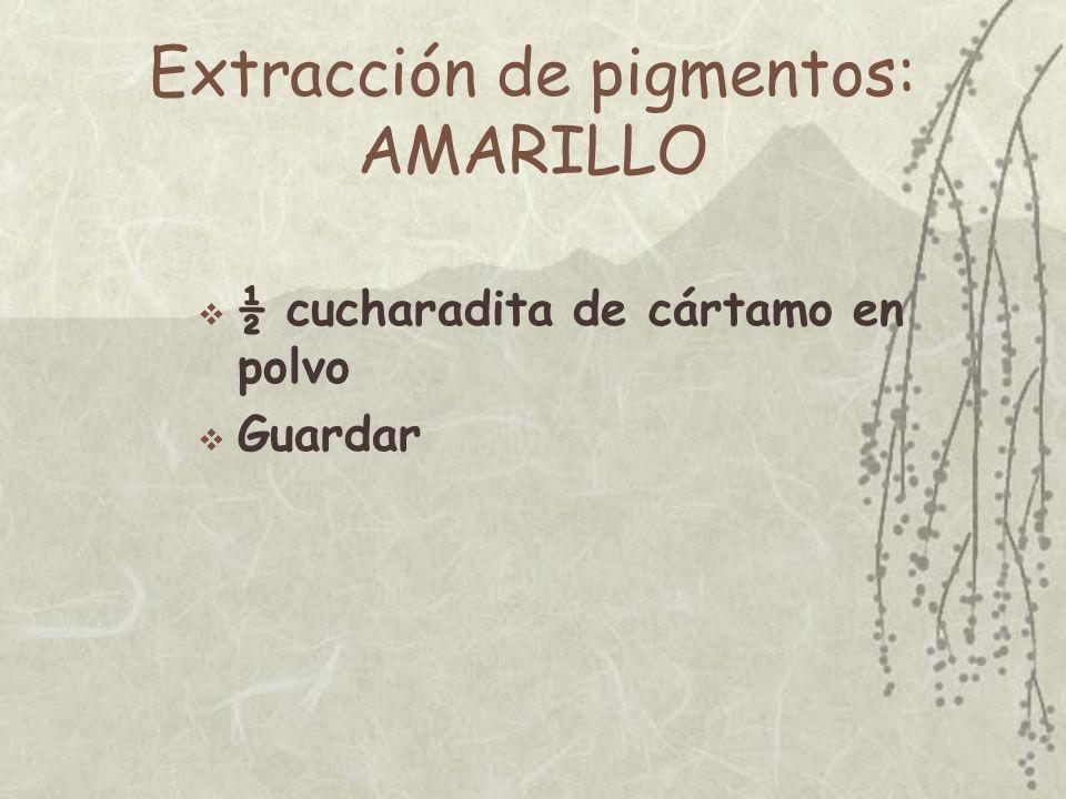 Extracción de pigmentos: AZUL 1 cucharadita de gravilla azul de acuario En doble bolsa de plástico –Golpear hasta polvo –horas...