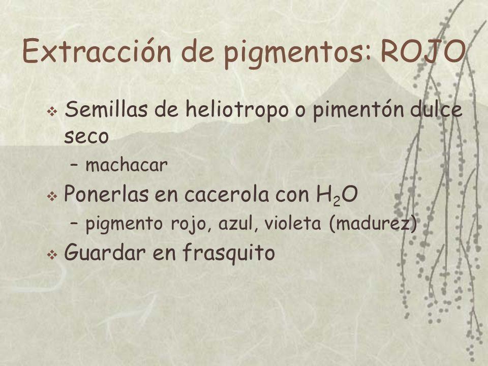 Extracción de pigmentos: NEGRO Vela encendida sobre plato –esperar a que se acumule hollín Recogerlo y guardar