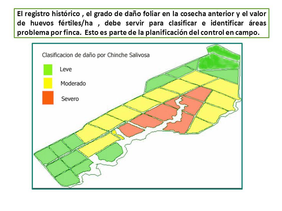El registro histórico, el grado de daño foliar en la cosecha anterior y el valor de huevos fértiles/ha, debe servir para clasificar e identificar área
