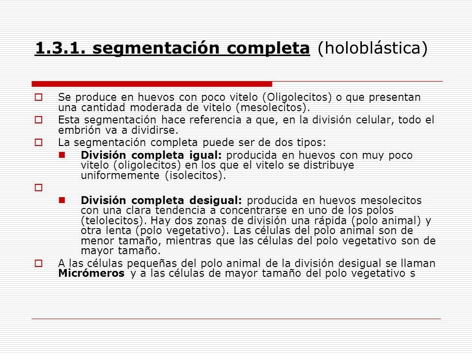 1.3.1. segmentación completa (holoblástica) Se produce en huevos con poco vitelo (Oligolecitos) o que presentan una cantidad moderada de vitelo (mesol