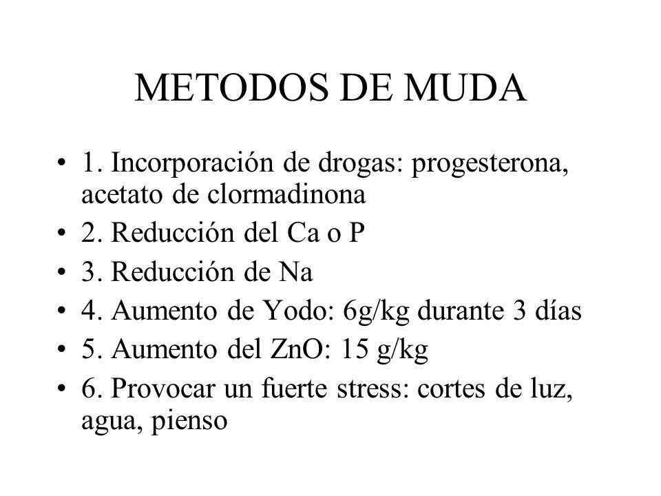 METODOS DE MUDA 1. Incorporación de drogas: progesterona, acetato de clormadinona 2. Reducción del Ca o P 3. Reducción de Na 4. Aumento de Yodo: 6g/kg