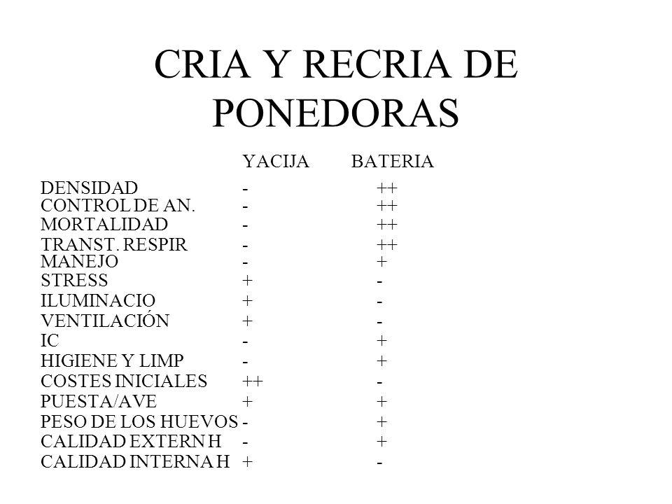 CRIA Y RECRIA DE PONEDORAS YACIJA BATERIA DENSIDAD-++ CONTROL DE AN.-++ MORTALIDAD-++ TRANST. RESPIR-++ MANEJO-+ STRESS+- ILUMINACIO+- VENTILACIÓN+- I