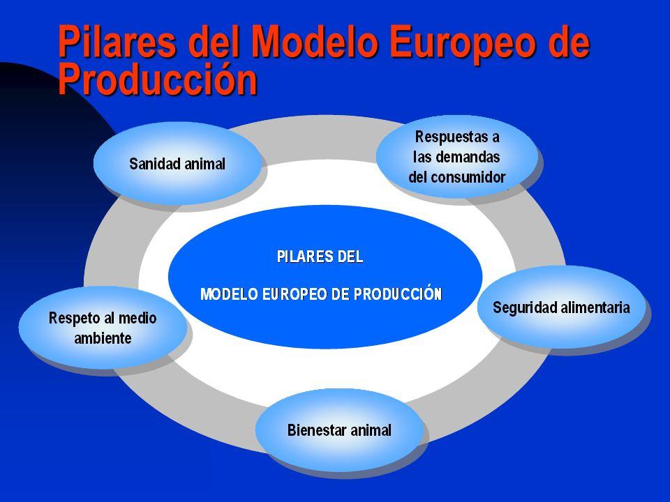 Producción mundial de huevos Europa: 16% de la producción mundial, Asia el 61% Últimos 17 años (1990-2007): Países en desarrollo, 78% del total mundial Europa baja producción total un 3%.