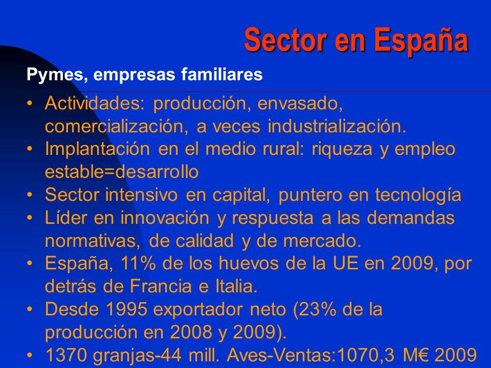Sector en España Pymes, empresas familiares Actividades: producción, envasado, comercialización, a veces industrialización. Implantación en el medio r