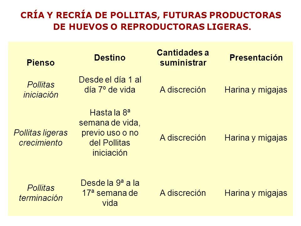CRÍA Y RECRÍA DE POLLITAS, FUTURAS PRODUCTORAS DE HUEVOS O REPRODUCTORAS LIGERAS. Pienso Destino Cantidades a suministrar Presentación Pollitas inicia