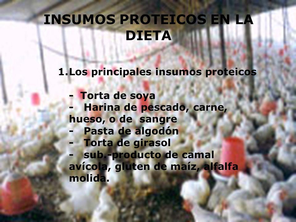 INSUMOS PROTEICOS EN LA DIETA 1.Los principales insumos proteicos - Torta de soya - Harina de pescado, carne, hueso, o de sangre - Pasta de algodón -