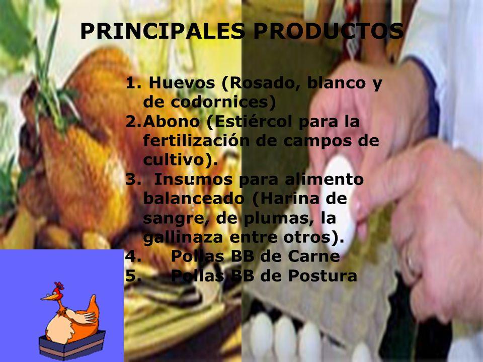 PRINCIPALES PRODUCTOS 1. Huevos (Rosado, blanco y de codornices) 2.Abono (Estiércol para la fertilización de campos de cultivo). 3. Insumos para alime