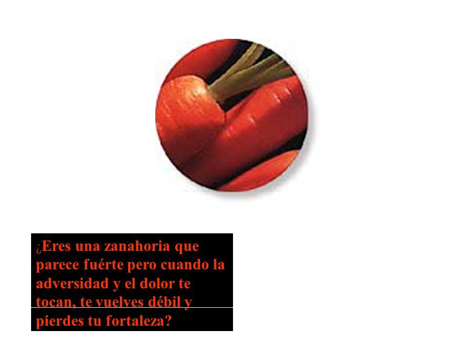 ¿ Eres una zanahoria que parece fuérte pero cuando la adversidad y el dolor te tocan, te vuelves débil y pierdes tu fortaleza?