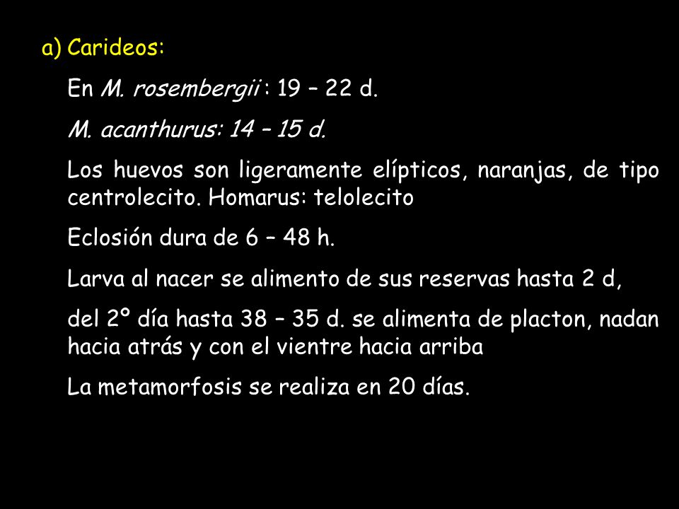 a)Carideos: En M. rosembergii : 19 – 22 d. M. acanthurus: 14 – 15 d.