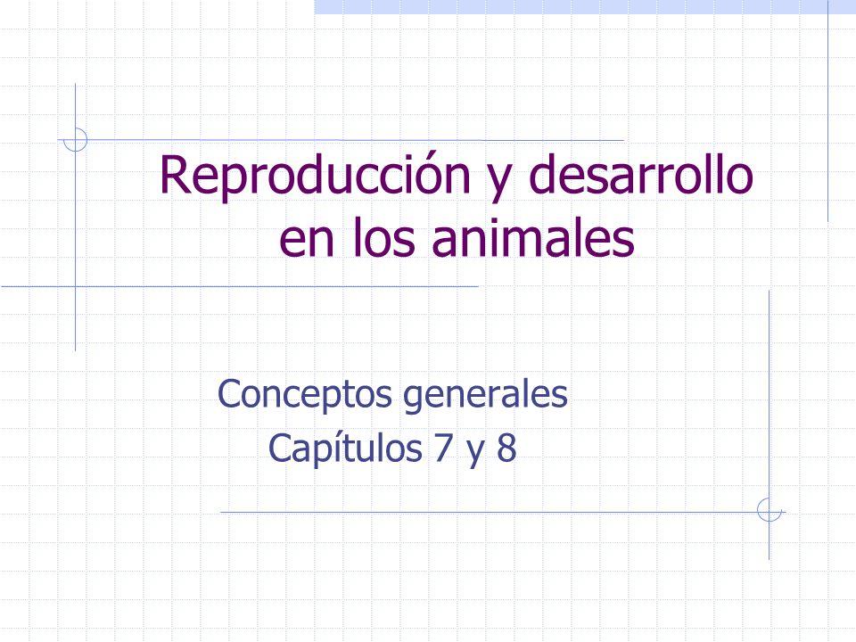 Reproducción y desarrollo en los animales Conceptos generales Capítulos 7 y 8