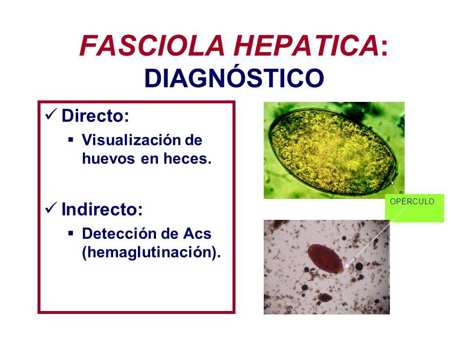 FASCIOLA HEPATICA: TRATAMIENTO: Bitionol (fase aguda).