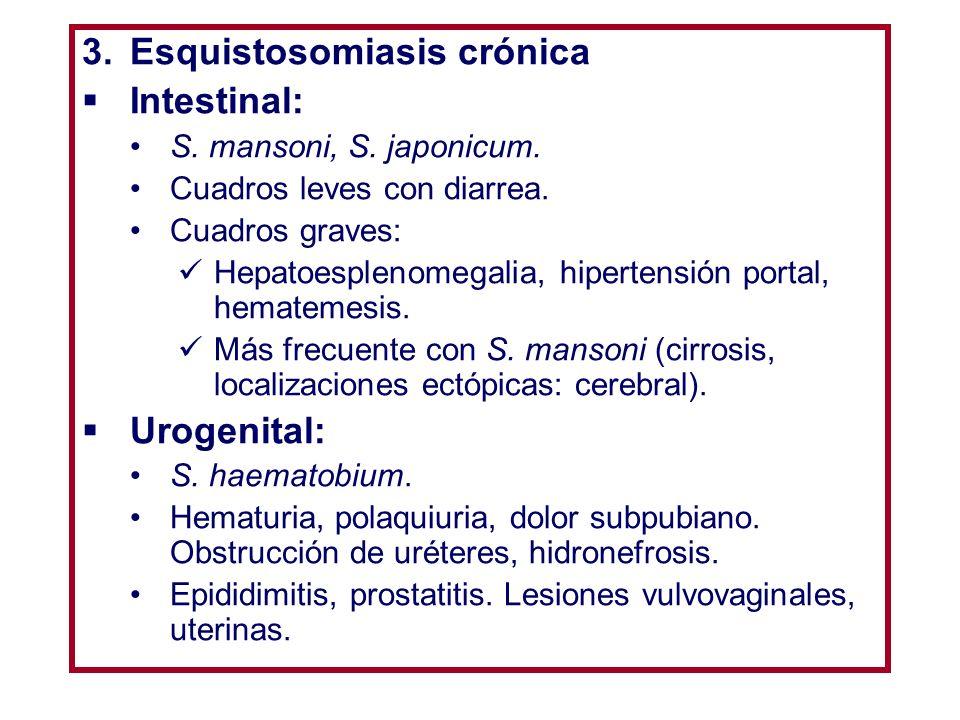 ESQUISTOSOMIASIS DIAGNÓSTICO Directo: Visualización de huevos (heces, orina, biopsia rectal) + viabilidad (movilidad en su interior).