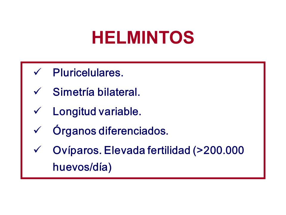 HELMINTOS Fasciola hepatica.TREMATODES Schistosoma spp.