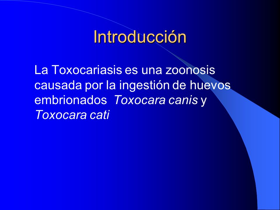 Introducción La Toxocariasis es una zoonosis causada por la ingestión de huevos embrionados Toxocara canis y Toxocara cati