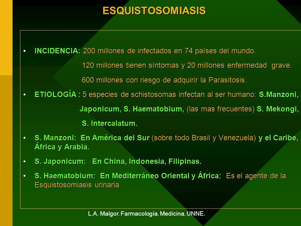 L.A. Malgor. Farmacología. Medicina. UNNE.ESQUISTOSOMIASIS INCIDENCIA:200 millones de infectados en 74 países del mundo.INCIDENCIA: 200 millones de in