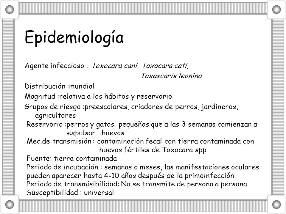 Epidemiología Agente infeccioso : Toxocara cani, Toxocara cati, Toxascaris leonina Distribución :mundial Magnitud :relativa a los hábitos y reservorio