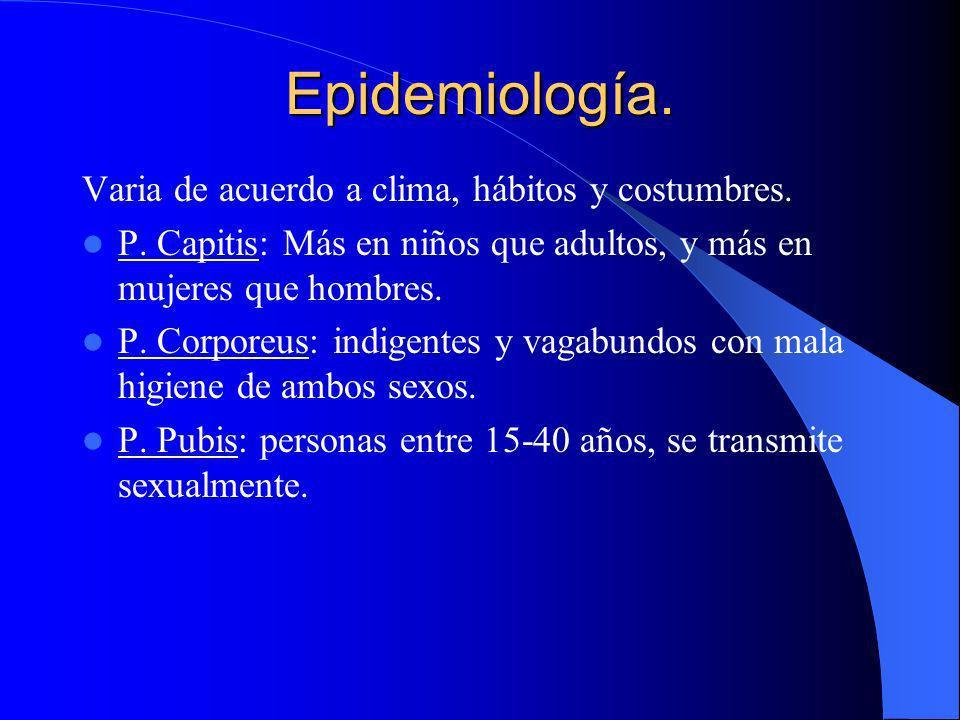 Epidemiología. Varia de acuerdo a clima, hábitos y costumbres. P. Capitis: Más en niños que adultos, y más en mujeres que hombres. P. Corporeus: indig