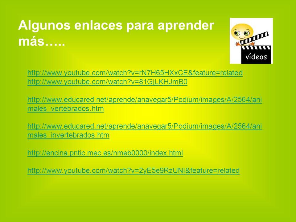 http://www.youtube.com/watch?v=rN7H65HXxCE&feature=related http://www.youtube.com/watch?v=81GjLKHJmB0 http://www.educared.net/aprende/anavegar5/Podium/images/A/2564/ani males_vertebrados.htm http://www.educared.net/aprende/anavegar5/Podium/images/A/2564/ani males_invertebrados.htm http://encina.pntic.mec.es/nmeb0000/index.html http://www.youtube.com/watch?v=2yE5e9RzUNI&feature=related Algunos enlaces para aprender más…..
