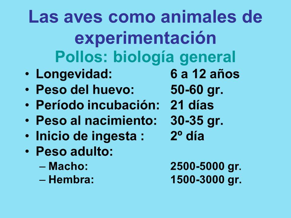 Las aves como animales de experimentación Pollos: biología general Longevidad:6 a 12 años Peso del huevo:50-60 gr. Período incubación:21 días Peso al