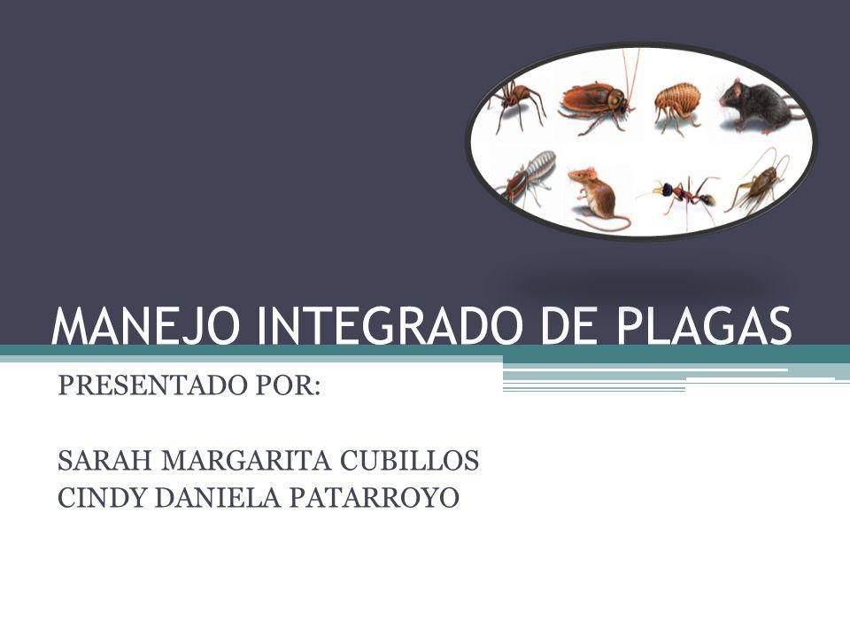 MANEJO INTEGRADO DE PLAGAS PRESENTADO POR: SARAH MARGARITA CUBILLOS CINDY DANIELA PATARROYO
