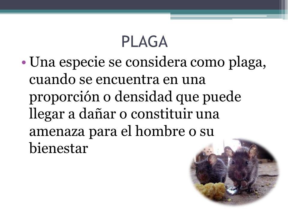 PLAGA Una especie se considera como plaga, cuando se encuentra en una proporción o densidad que puede llegar a dañar o constituir una amenaza para el