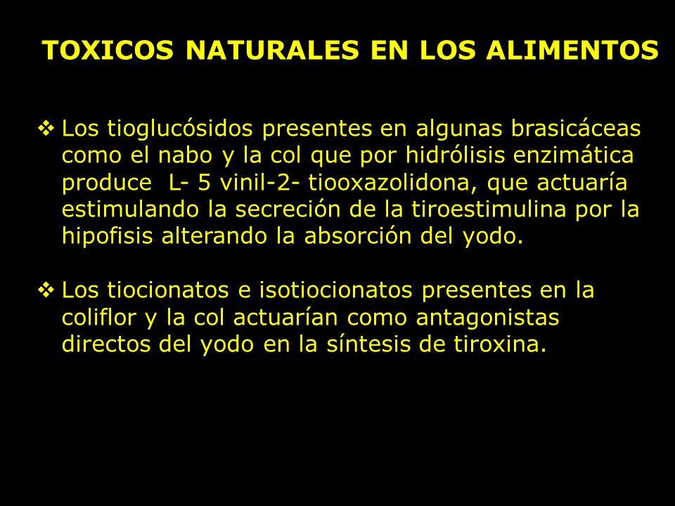 TOXICOS NATURALES EN LOS ALIMENTOS Los tioglucósidos presentes en algunas brasicáceas como el nabo y la col que por hidrólisis enzimática produce L- 5 vinil-2- tiooxazolidona, que actuaría estimulando la secreción de la tiroestimulina por la hipofisis alterando la absorción del yodo.
