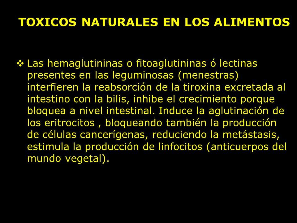 Las hemaglutininas o fitoaglutininas ó lectinas presentes en las leguminosas (menestras) interfieren la reabsorción de la tiroxina excretada al intestino con la bilis, inhibe el crecimiento porque bloquea a nivel intestinal.