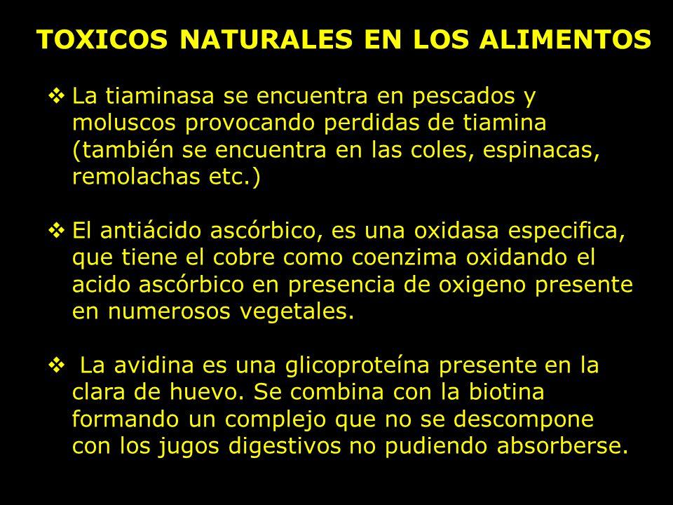 TOXICOS NATURALES EN LOS ALIMENTOS La tiaminasa se encuentra en pescados y moluscos provocando perdidas de tiamina (también se encuentra en las coles, espinacas, remolachas etc.) El antiácido ascórbico, es una oxidasa especifica, que tiene el cobre como coenzima oxidando el acido ascórbico en presencia de oxigeno presente en numerosos vegetales.