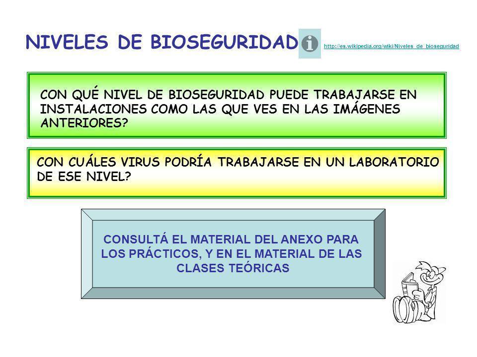 NIVELES DE BIOSEGURIDAD http://es.wikipedia.org/wiki/Niveles_de_bioseguridad http://es.wikipedia.org/wiki/Niveles_de_bioseguridad CON QUÉ NIVEL DE BIO
