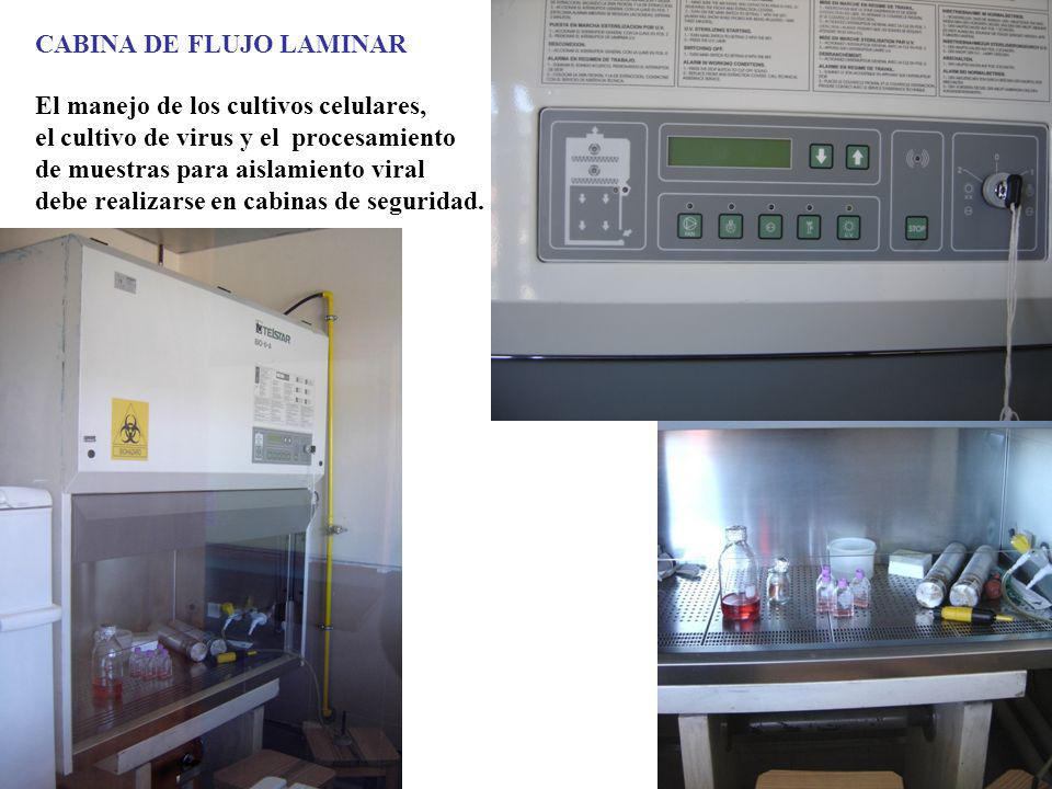 CABINA DE FLUJO LAMINAR El manejo de los cultivos celulares, el cultivo de virus y el procesamiento de muestras para aislamiento viral debe realizarse