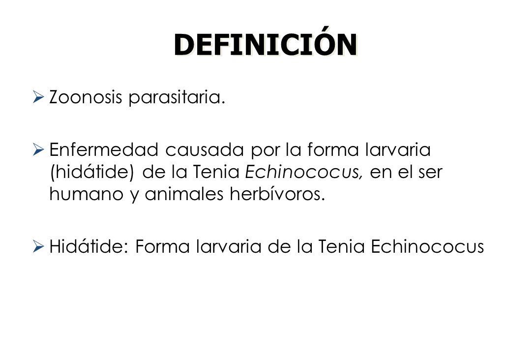 DEFINICIÓN Zoonosis parasitaria. Enfermedad causada por la forma larvaria (hidátide) de la Tenia Echinococus, en el ser humano y animales herbívoros.